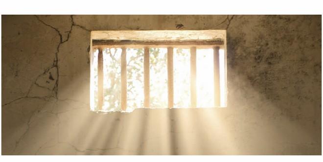 ICPO_Window