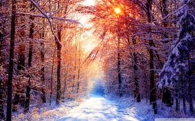 sun in winter