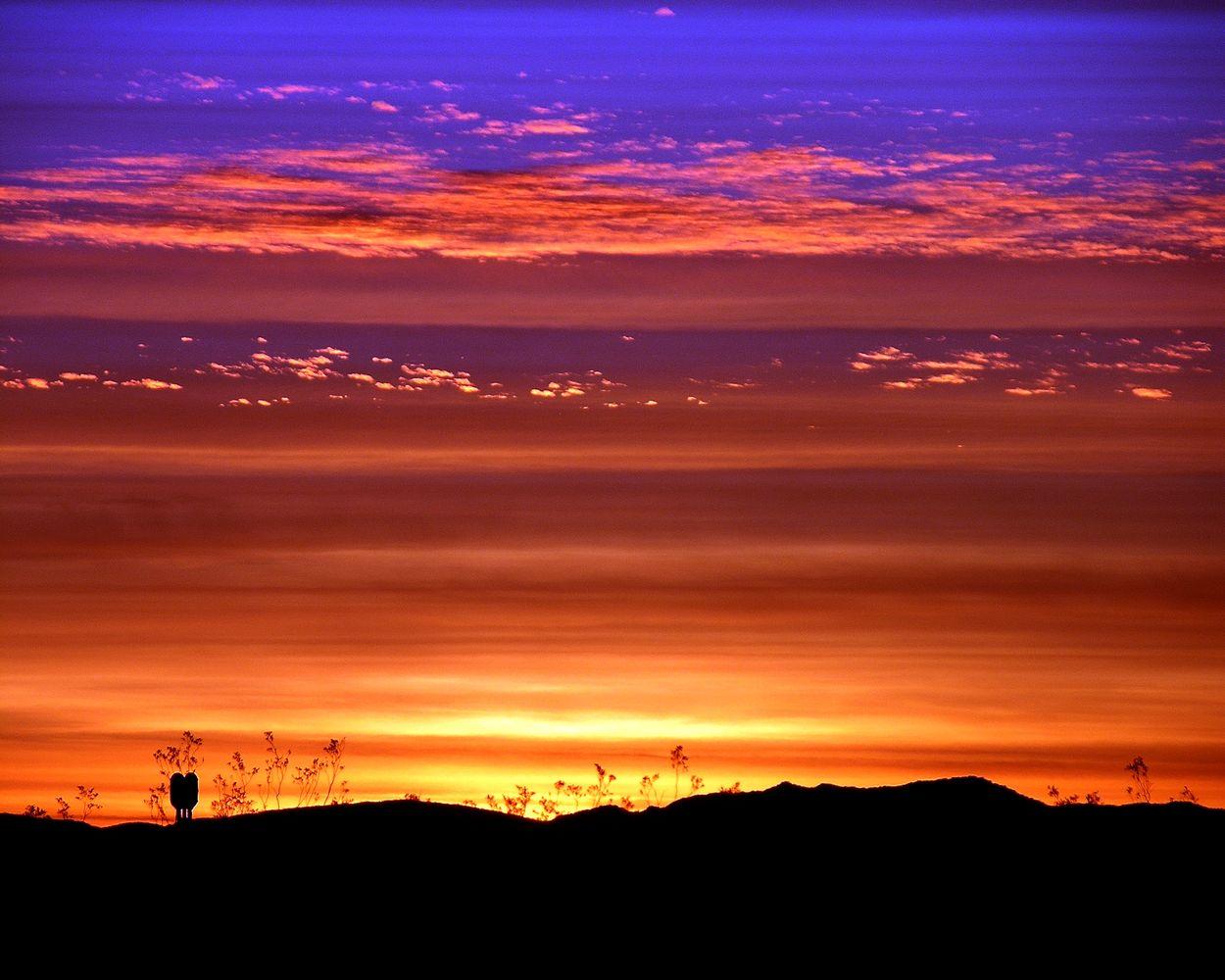 dawn mass 4