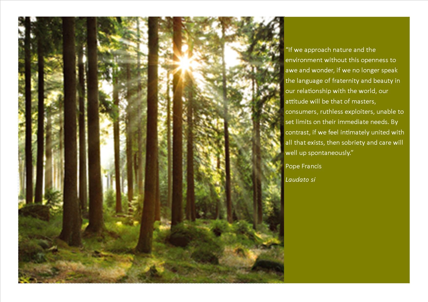 world day of prayer for the care of creation on 1 september 2015