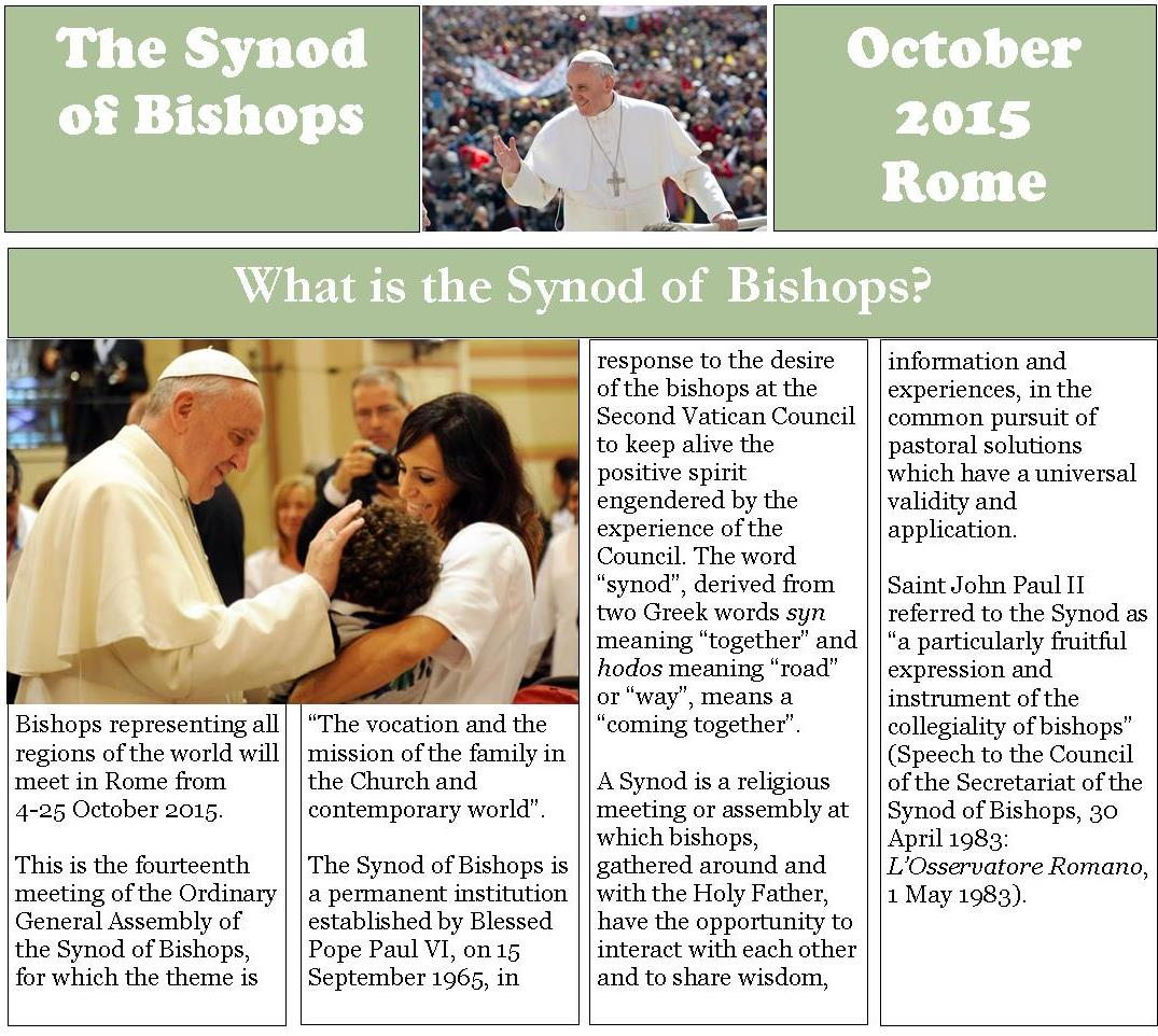 Synod of Bishops FAQ web image