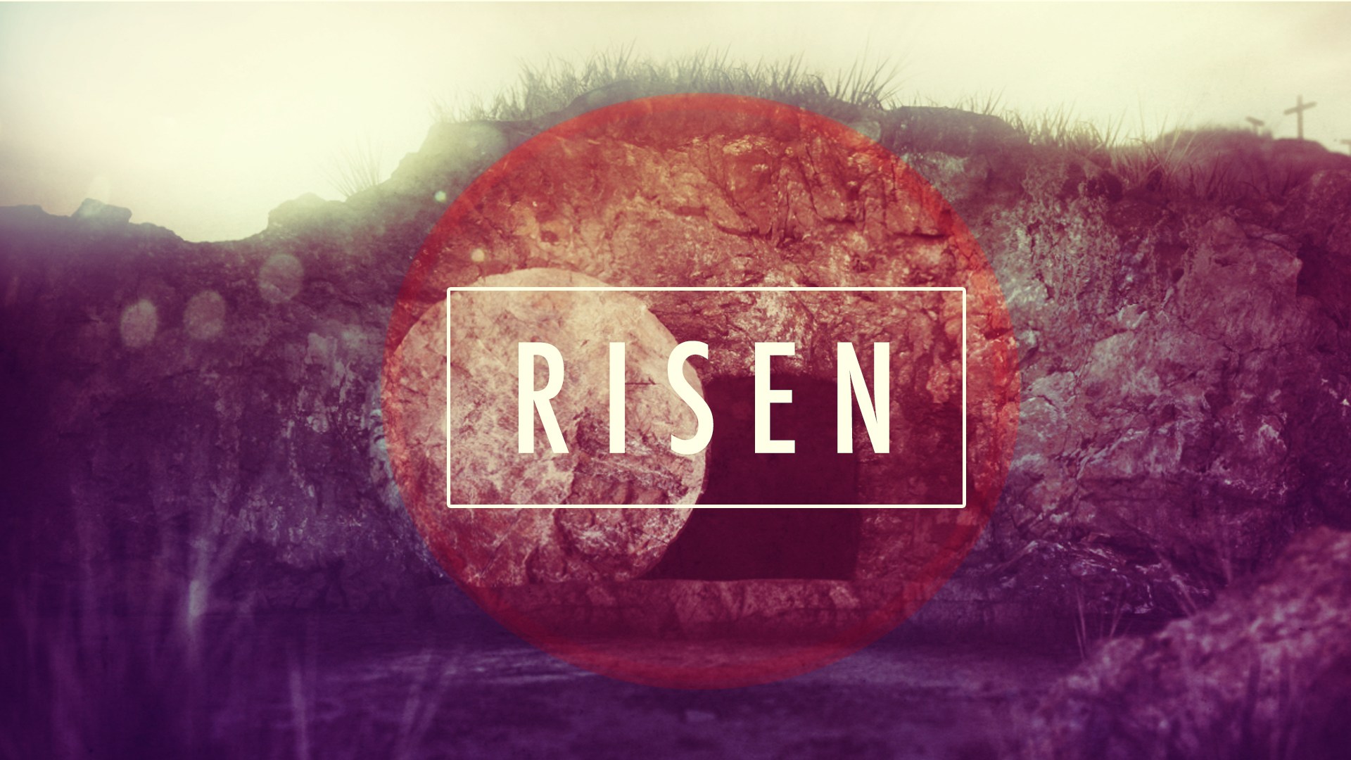 Christ is risen, alleluia!' | Irish Catholic Bishops' Conference