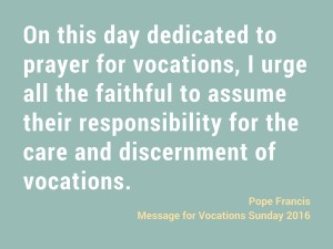 On this day dedicated to prayer for vocations, I urge all the faithful to assume their responsibility for the care and discernment of vocations.