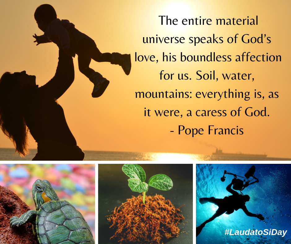 https://www.catholicbishops.ie/wp-content/uploads/2019/07/Creation-time-2019-2.png