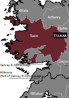 Image result for archdiocese of tuam